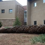 PAULA CASTILLO SCULPTURE: Ft. Lewis College installation 2010. Durango, Colorado